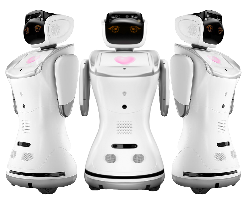 sanbot-3